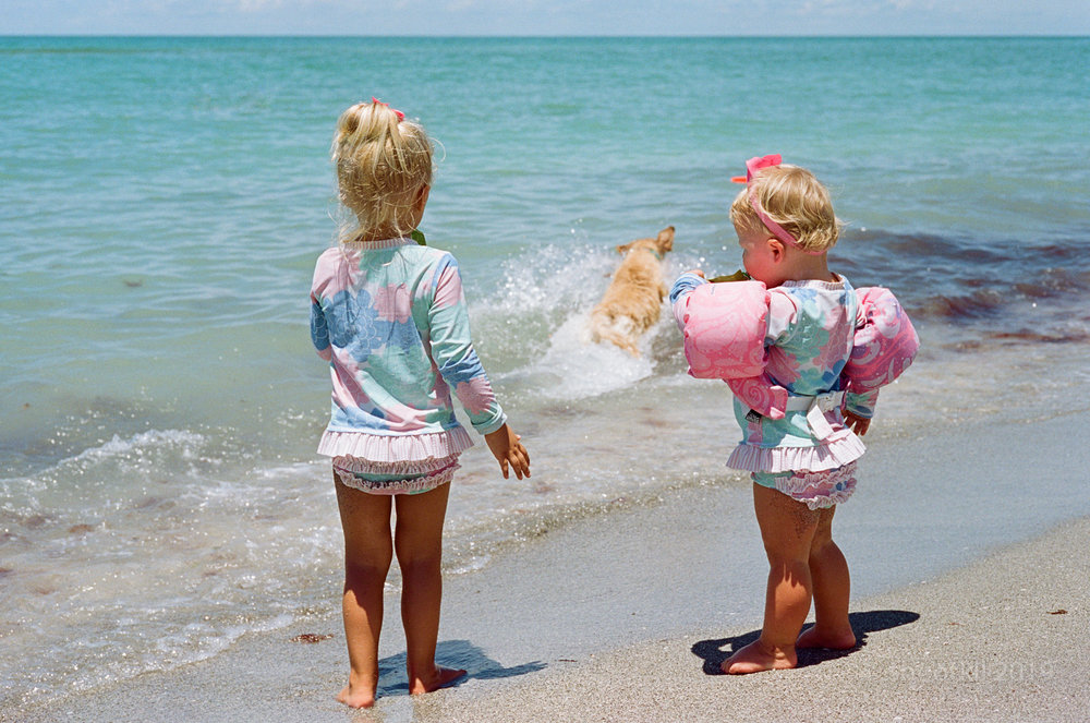 Dog-Beach-Ripley-07272019-30.jpg