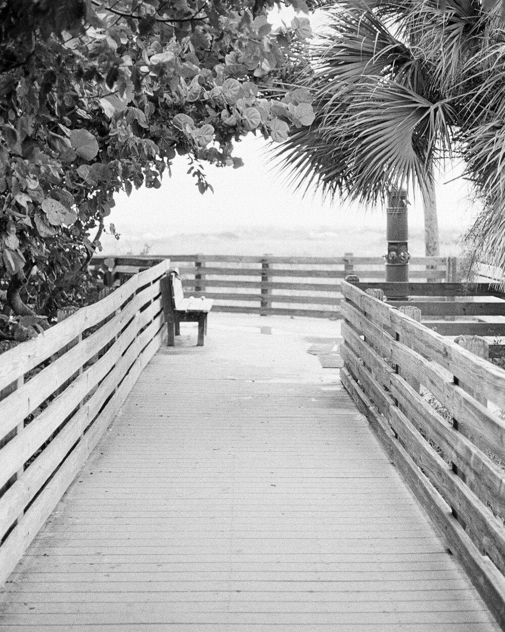 Beach-Sunset-Park-Kids-Leica-MA-29.jpg