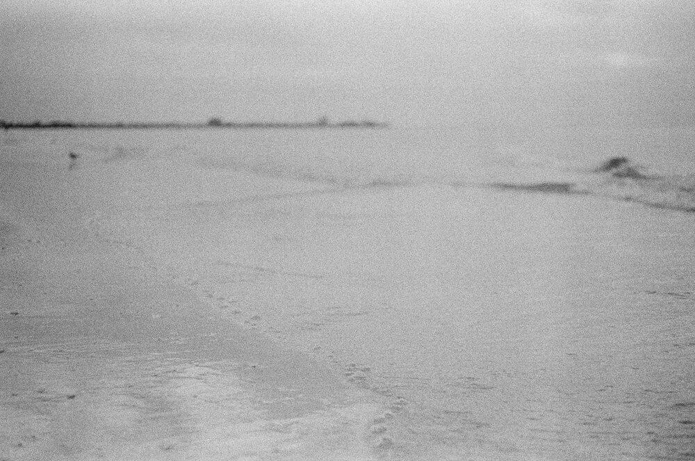 Beach-Sunset-Park-Kids-Leica-MA-15.jpg