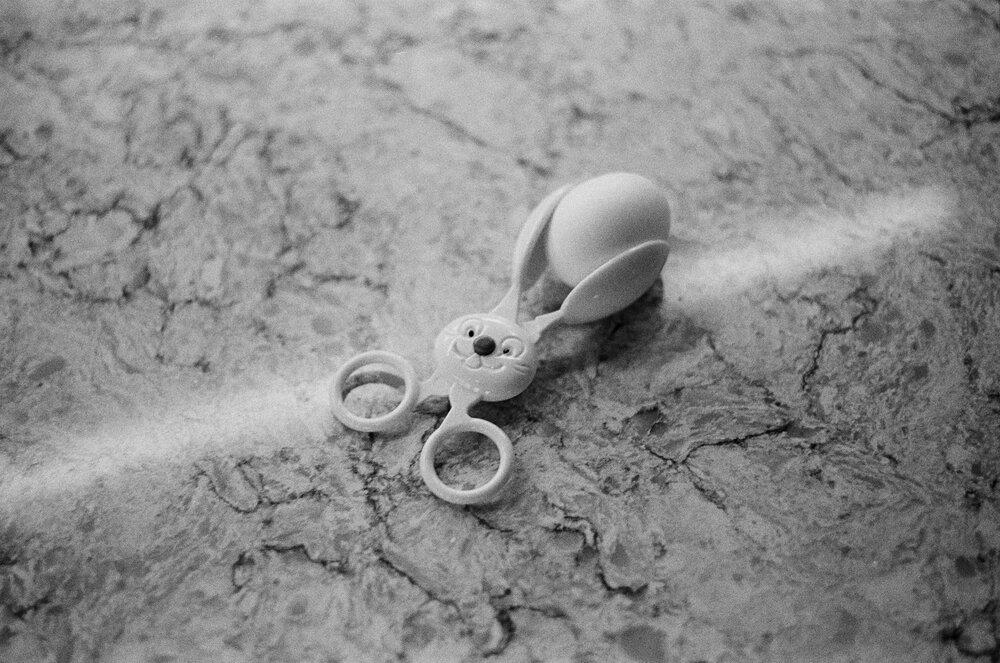 Home-Park-B&W-Easter-Eggs-Leica-M-A-34.jpg