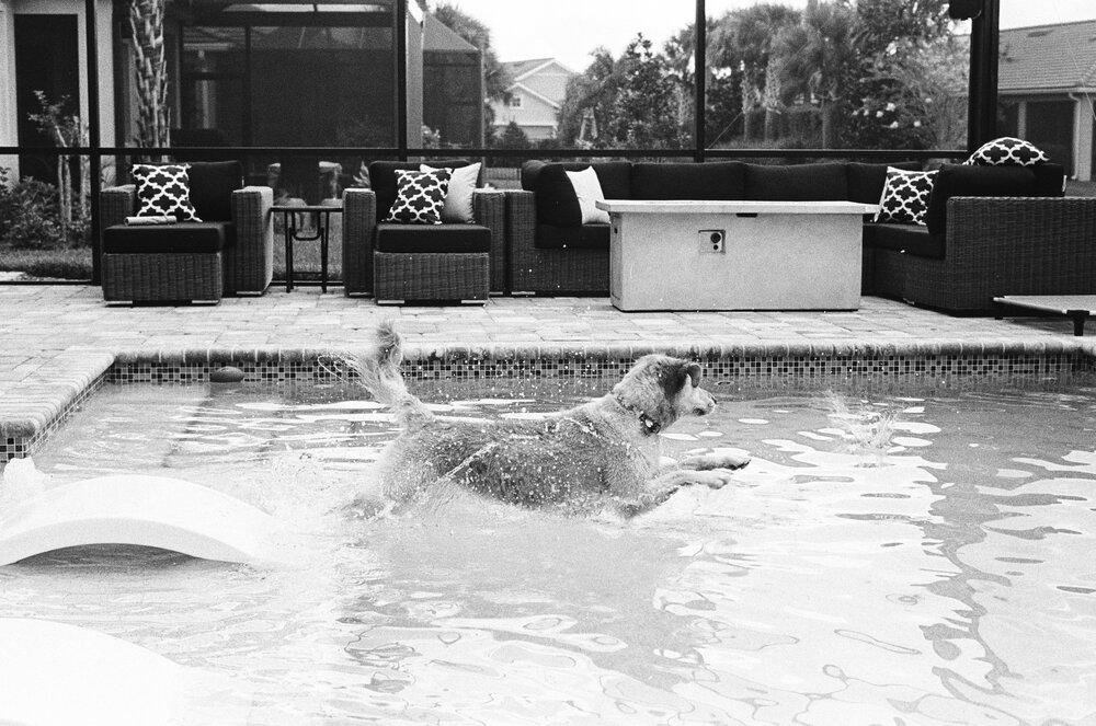 01-Leica-M-A-Kids-Pool-Smiles-Random-17.jpg